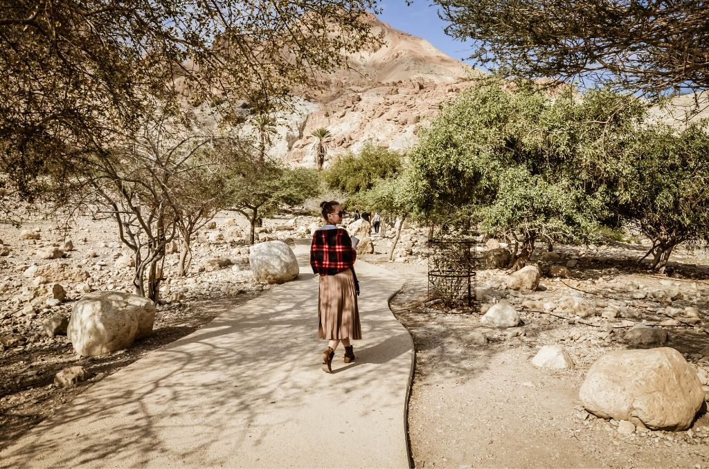 Park Ein Gedi w Izraelu